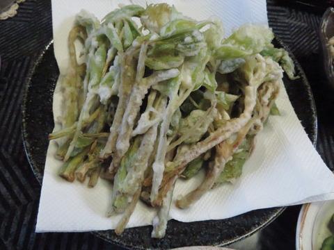 ウドの天ぷら。