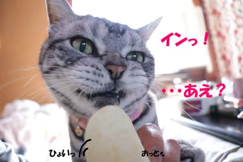♪・・・!?