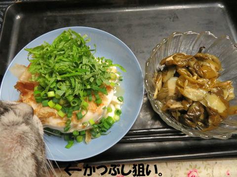 お豆腐とおつけもん。