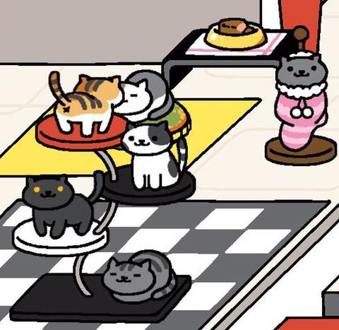 高級マグロ猫缶でいっぱい集まる猫達