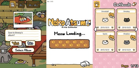 Meow Loading