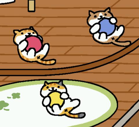 ゴムボールで遊ぶ3匹のねこ