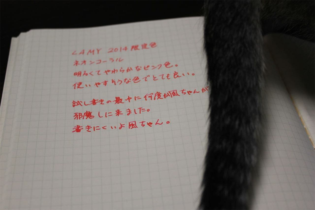 IMG_7849.jpg