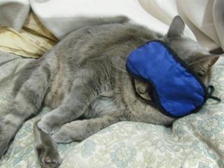 ネコのアイマスク