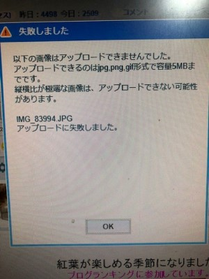 IMG_89994