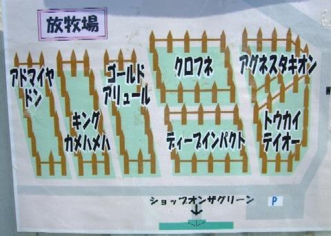 2007_0923猫写真0009