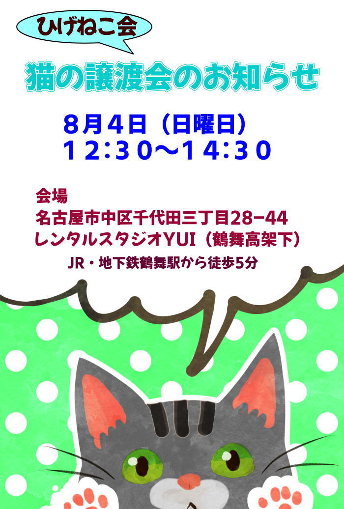 8月4日日曜日!真夏の猫の譲渡会in名古屋開催しますよー♪