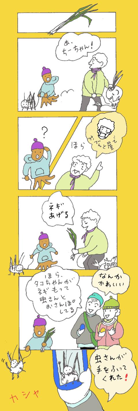 maru299
