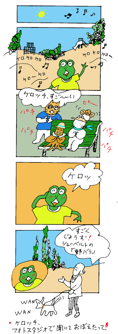 maru137