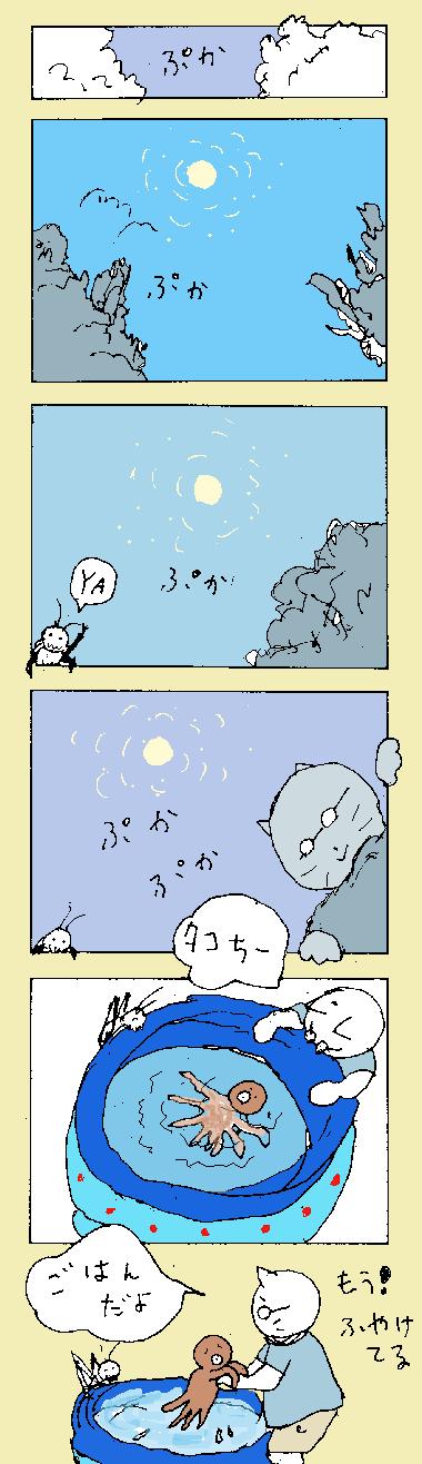 maru360