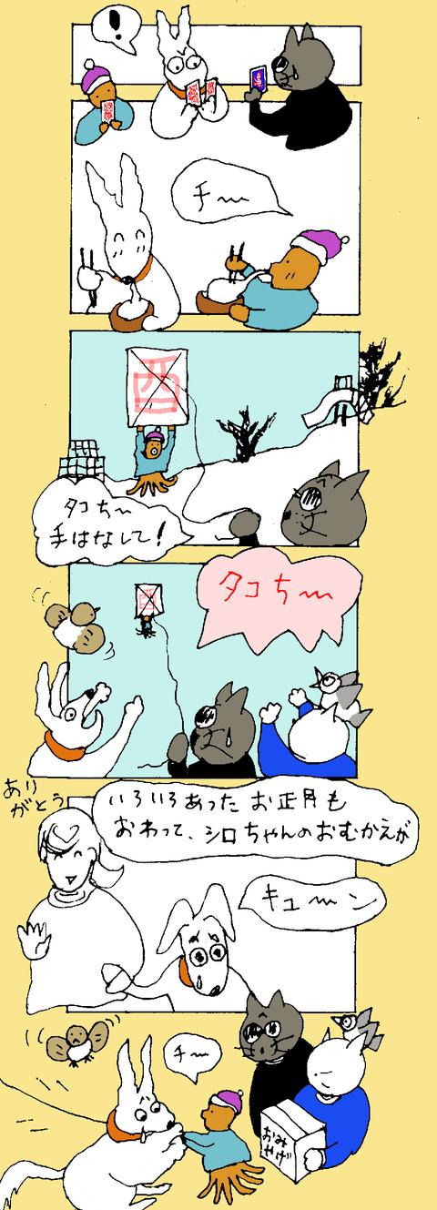 maru245