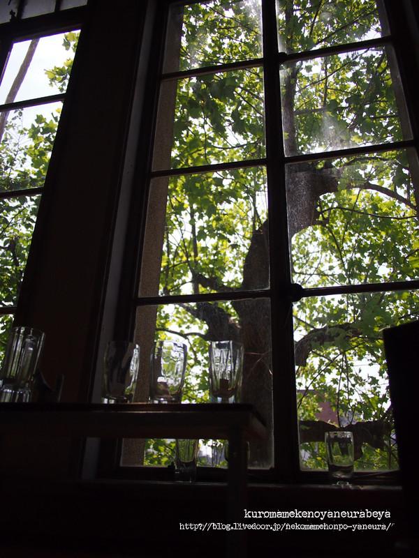 校舎の窓から