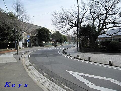 6IMG_7566