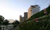 旭橋1(横)