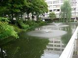 岩手公園噴水