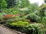 岩手公園花壇