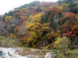 滝と紅葉2