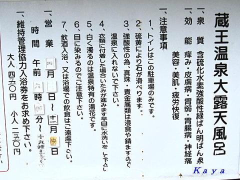 6IMG_8225