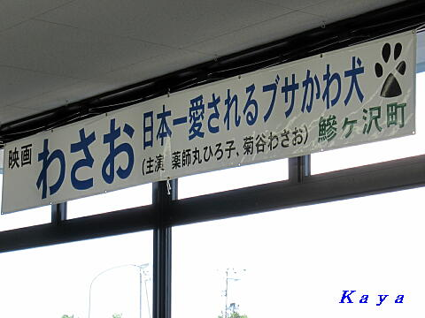 6IMG_5204