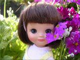 「菜の花です♪」