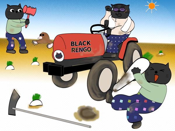 黒猫と農業