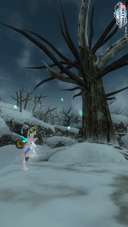枯れ木と雪の花