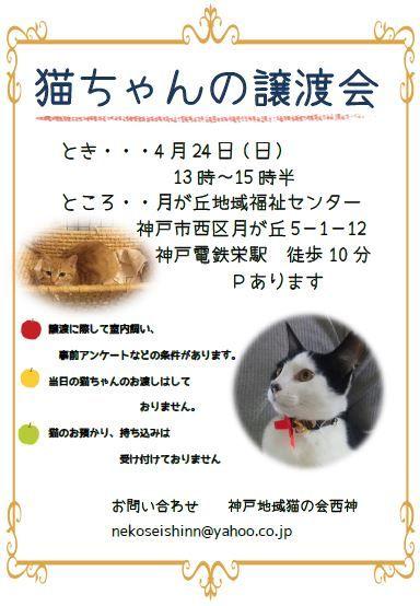 第26回譲渡会ポスター(順延分) (2)