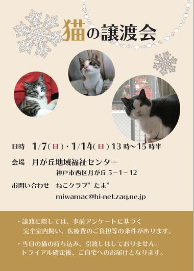201801譲渡会ポスターweb