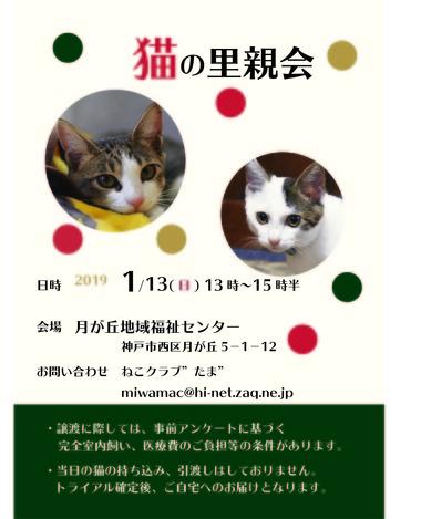 2019.1.譲渡会P2
