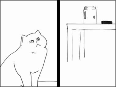 猫が 「ガラス瓶」を見上げていた → あの中に入りたいにゃ・・・ → 結果
