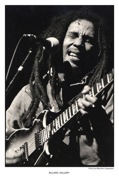 Bob Marley展DM