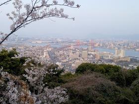高塔山からの眺め