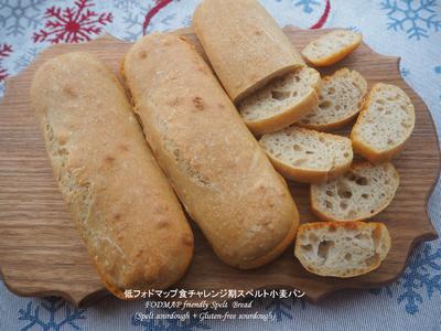 スペルトサワー種+グルテンフリーサワー種 スペルト小麦パン