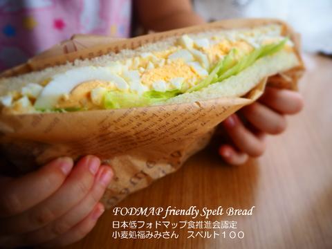 日本低フォドマップ食推進会認定 スペルト小麦パン スペルト100
