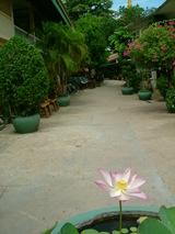 カンボジア投資旅行3