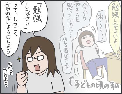 IMG_6331