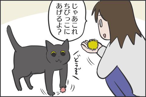 IMG_8351