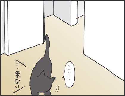 IMG_6030