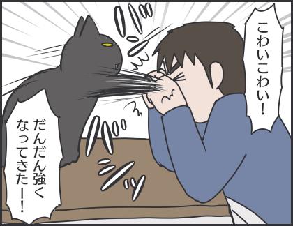 IMG_6775