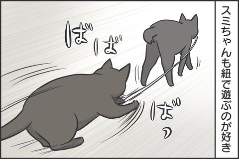 紐で遊ぶ猫3