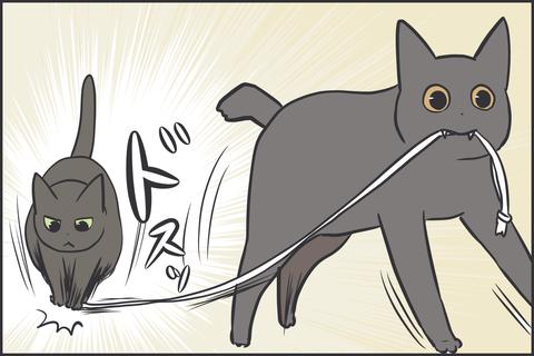 紐で遊ぶ猫2