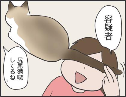 IMG_6931