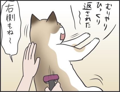 IMG_6008