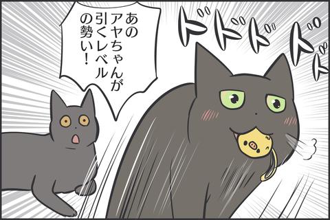 猫の好きなおもちゃ3