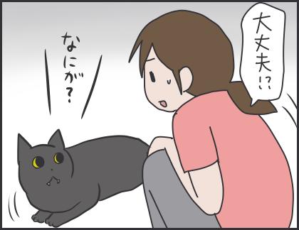 IMG_6067