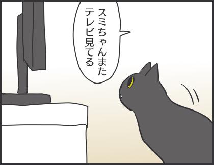 IMG_6901