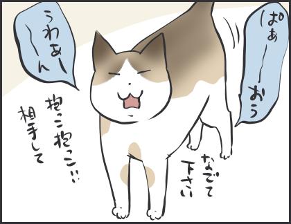 IMG_6808