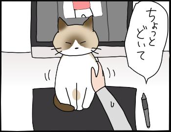 ぺろ邪魔2