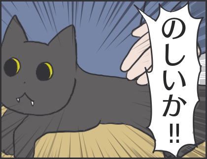 IMG_6952