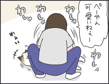 IMG_6206